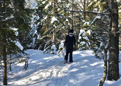 schneeschuhwandern-altenberg-an-der-rax-hanslgrabner-10
