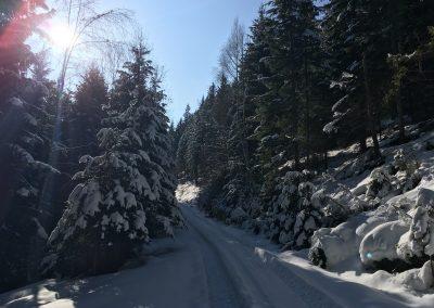 schneeschuhwandern-altenberg-an-der-rax-hanslgrabner-2