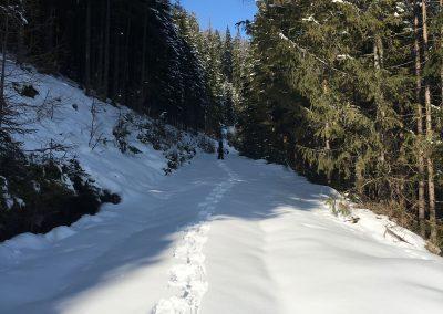 schneeschuhwandern-altenberg-an-der-rax-hanslgrabner-8