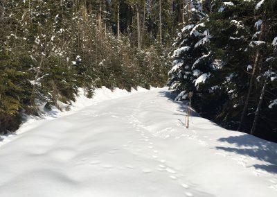 schneeschuhwandern-altenberg-an-der-rax-hanslgrabner-9